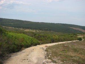 Gravel road up Nol se Kop