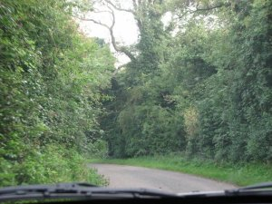 Narrow roads, tall hedges