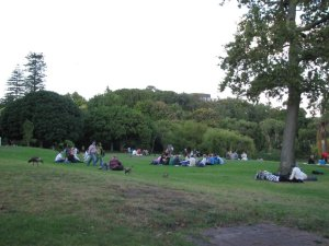 Other picnickers