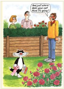 Cartoon-neighbour-cat
