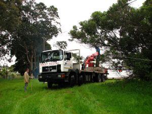The truck reverses down the grassy lane