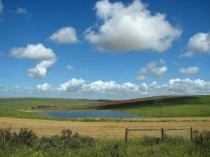 A dam near the road