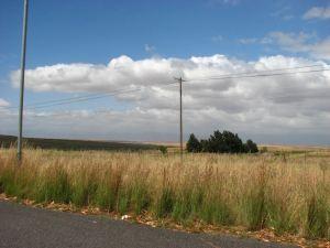 More fields
