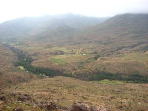 View from the Nieuwoudt Pass