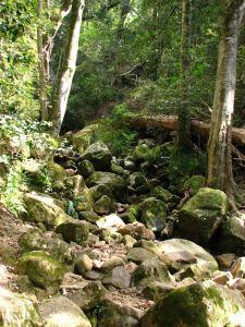 07-Looking-upstream