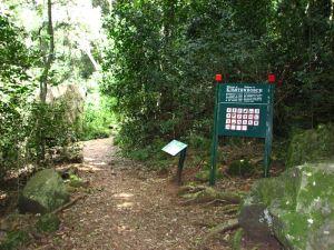 17-Kirstenbosch-entrance