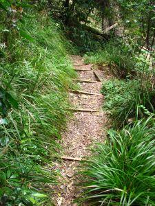 27-More-downhill