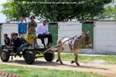 Raoul Davids from Uitsig (Ravensmead) arrives with his donkey Biscuit