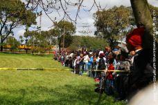 Spectators lining the perimeter of the arena