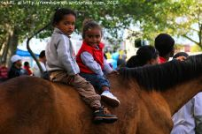 The little ones are really comfortable around the horses from a very young age