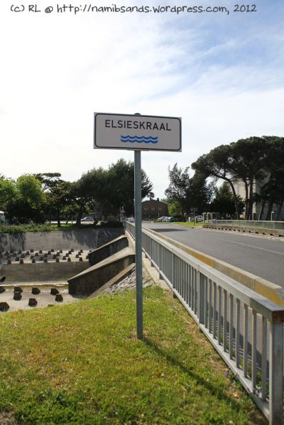 The canal of the Elsieskraal river that runs through Pinelands