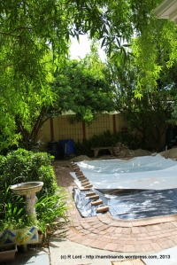 A make-shift pool cover consisting of a couple of  drop-sheets