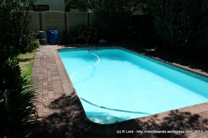 Look! Our Pool Is Clean Again!
