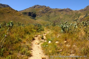 We follow the trail up the Swartboskloof