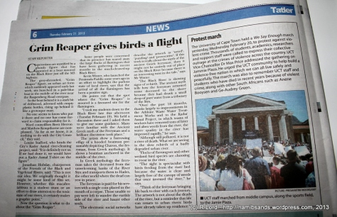 The article that appeared in the local Tatler newspaper on 21 February 2013