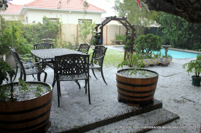 Our backyard is almost white with hailstones