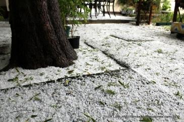Slippery and slushy - walk carefully on the loose paving stones!