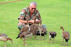 Sgt Major Van Niekerk has a soft spot for the family of Egyptian geese