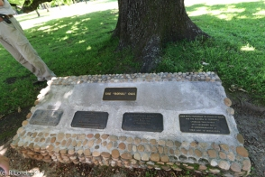 The plaques at the foot of the tree