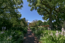 Path leading straight through the large Octagonal Garden
