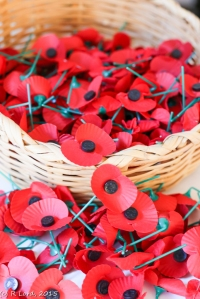 Red paper poppies are traditionally handed out in November and leading up to Remembrance Day